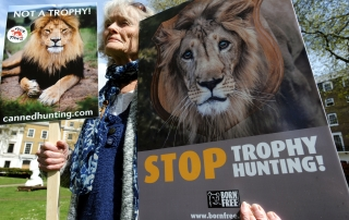 BORN FREE MARCH AGAINST TROPHY HUNTING6